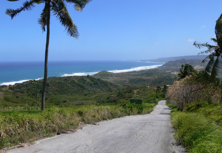 Ten Tips to Note When Buying Land in Barbados - Foodica