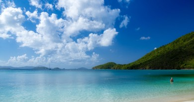 Economic Citizenship by Investment in the Caribbean