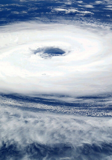 Odd Cents - The Financial Impact of Hurricanes - Foodica