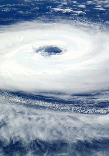Odd Cents - How to Financially Prepare for the Next Tropical Storm - Update